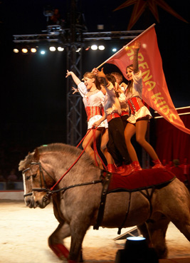 cirque médrano montpellier